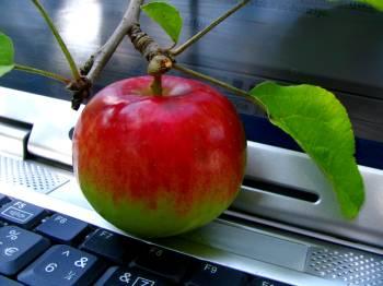 jablko-komputer-350.jpg